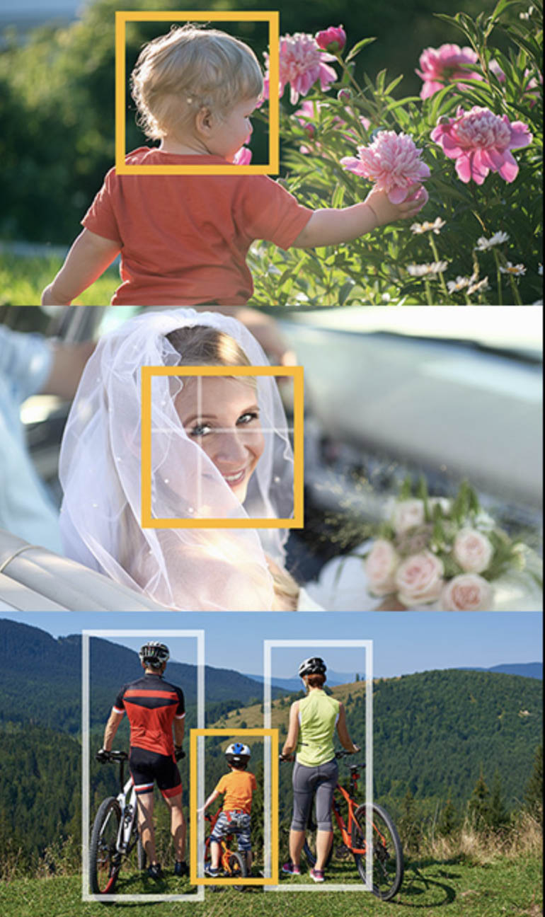 nouvel autofocus détection de l'oeil Panasonic Lumix S5