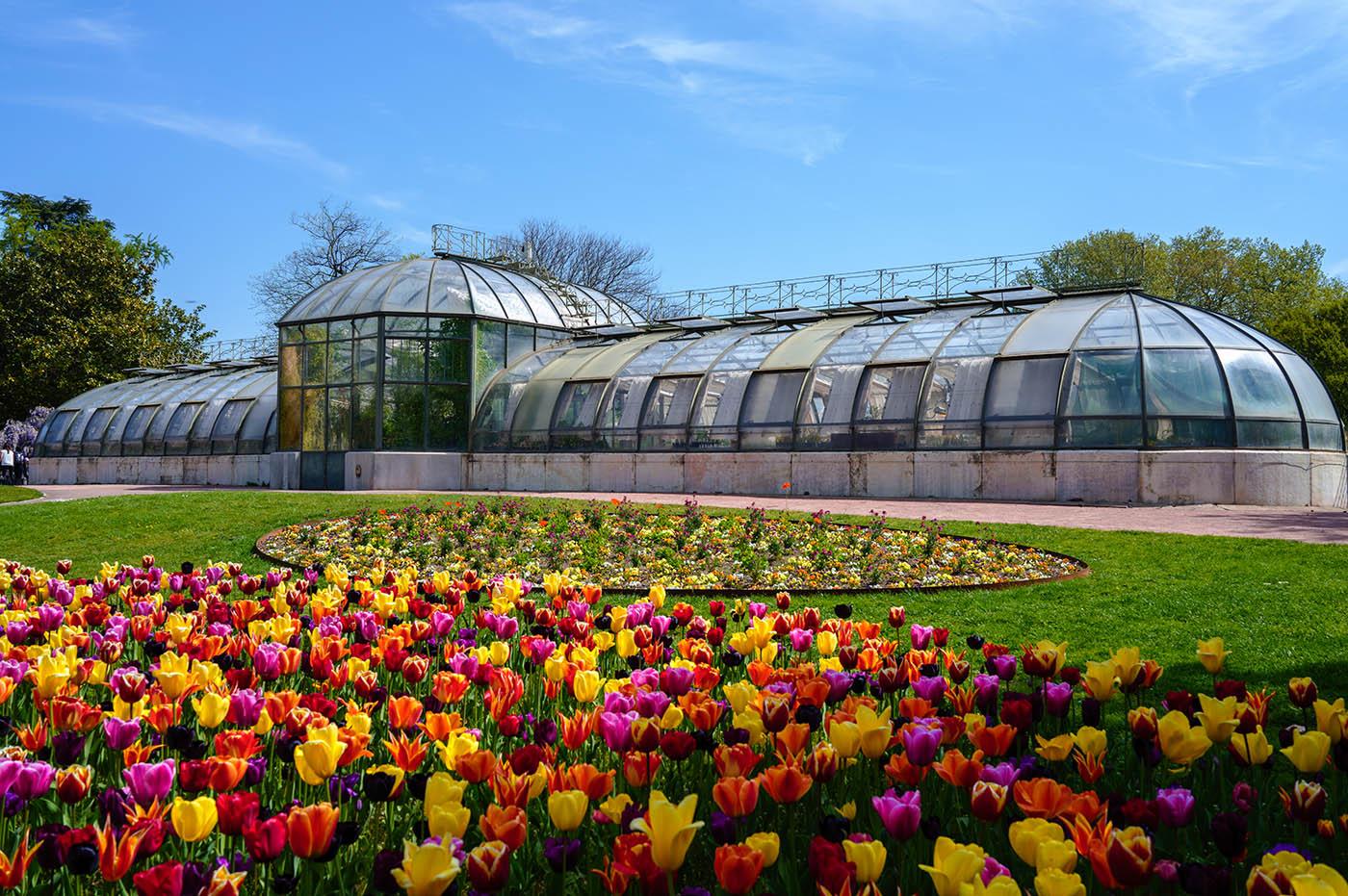 photo serre parc Lyon